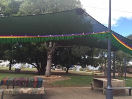 Community picnic 1